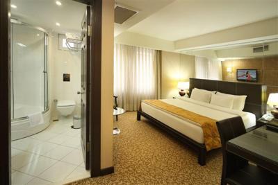 هتل کارتن هتل